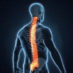 Soulager le mal de dos : causes de la lombalgie