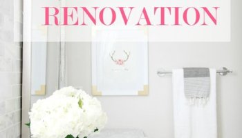 Bathroom Renovations Questions master bathroom renovation | here we go - a thoughtful place