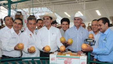 A la inauguración de la Integradora acudieron invitados especiales como el presidente de la Cámara de Diputados, Jesús Zambrano; el evento fue considerado un hecho sin precedentes por parte de los productores