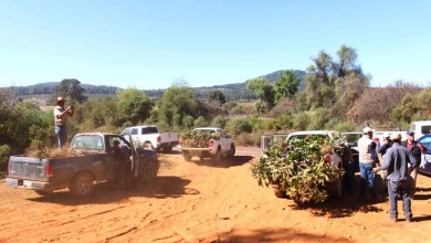Los operativos y la vigilancia continuarán en esta cuenca para combatir el delito de cambio de uso de suelo