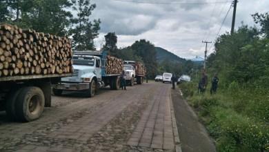 Aseguran camiones que transportaban madera clandestina en Zitácuaro