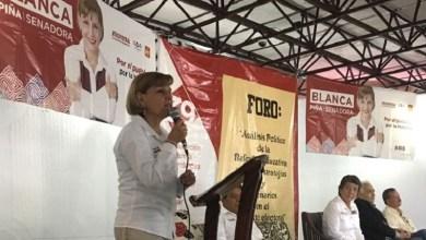 Piña Gudiño comentó que, en el fondo, la contra reforma educativa, impulsó la autogestión escolar y la evaluación punitiva, con la que se eliminó la estabilidad laboral