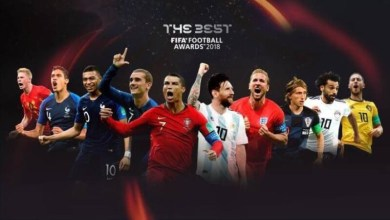 Los nominados en todas las categorías fueron elegidos por un panel de expertos, mientras que la votación recaerá en los fanáticos y en los expertos