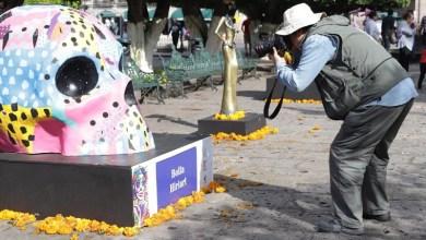 Es de destacar que el Ayuntamiento ha decorado cerca de 300 balcones del primer cuadro, se colocaron más de 4 mil plantas de flor de cempasúchil y además se embellecieron espacios como San José, Plaza Capuchinas, el Carmen, Jardín de las Rosas, la Plaza de Armas y el arco del Acueducto