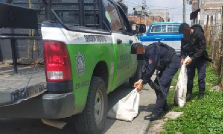 Policía Ambiental, Policía Michoacán