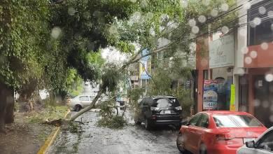 lluvias, Morelia,cae rama,Avenida Camelinas