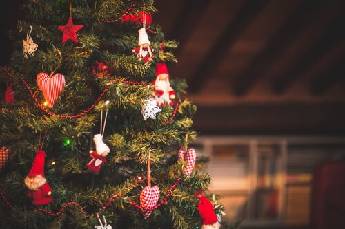 How to keep your christmas tree looking lively a time to shop a time to shop christmas tree solutioingenieria Image collections