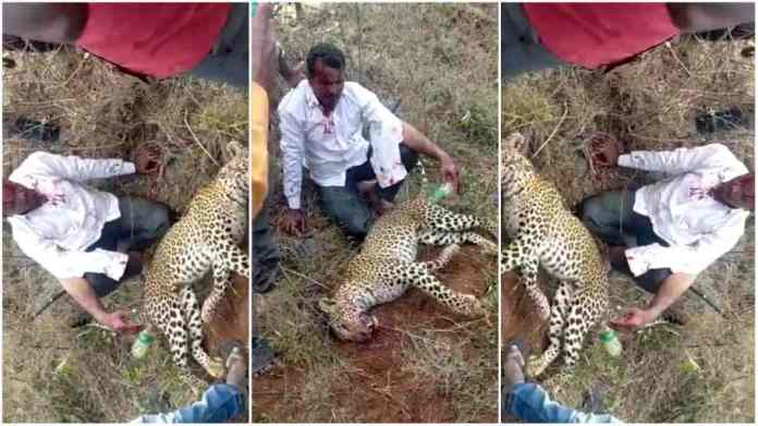 Man kills leopard with bare hands to save his family