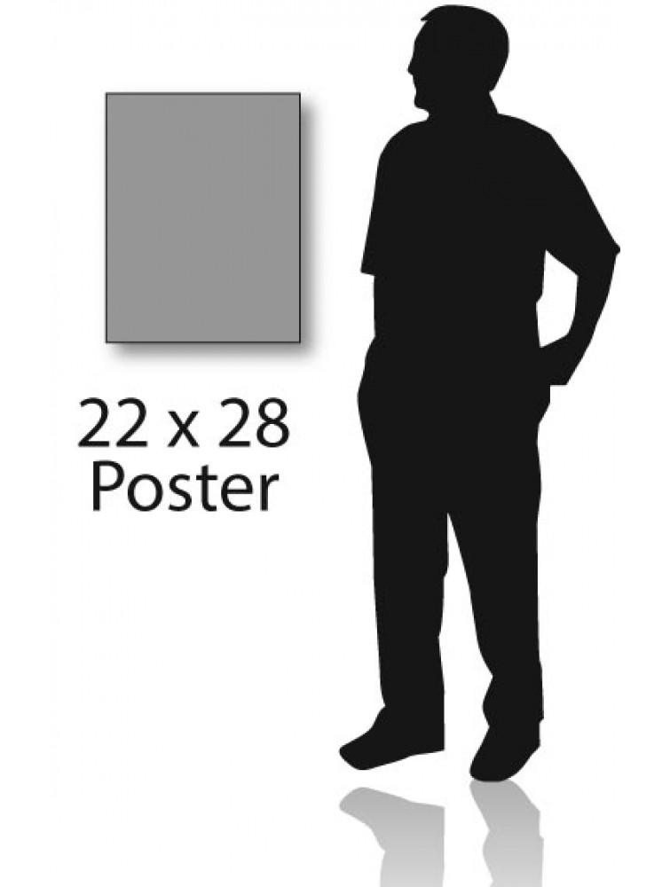 22 x 28 print