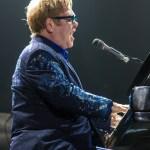 Elton 6 (1 of 1)