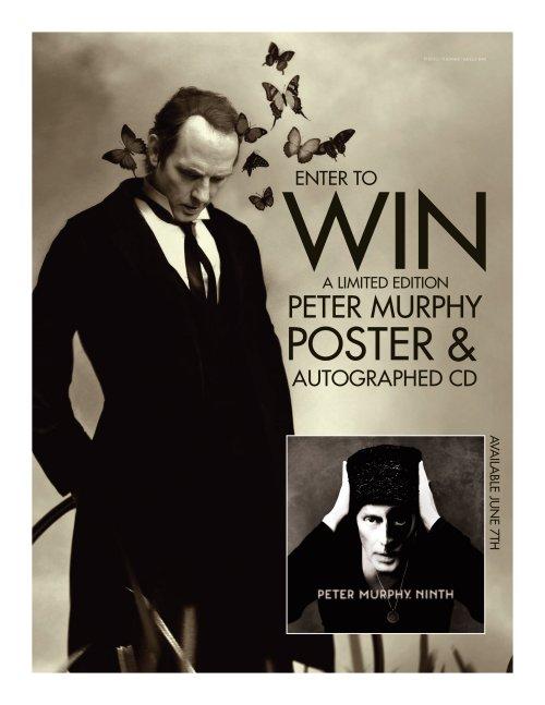 PeterMurphyPoster_Win