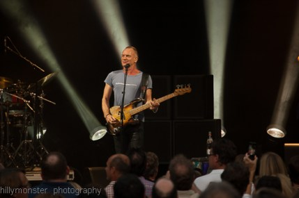 Sting (7)