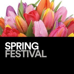 spring festival mall of ga