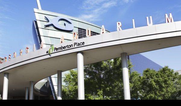 Georgia Aquarium: Current admission deals and discounts