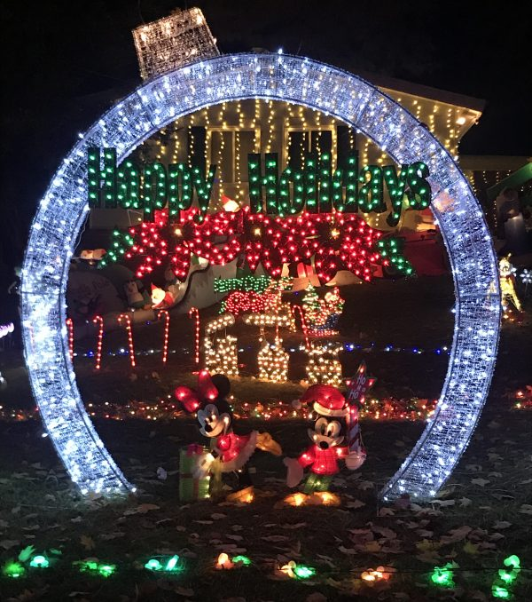 Brilliant holiday lights in front of a house