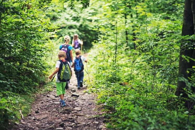 Hiking Trails and Nature Walks for Kids in Atlanta