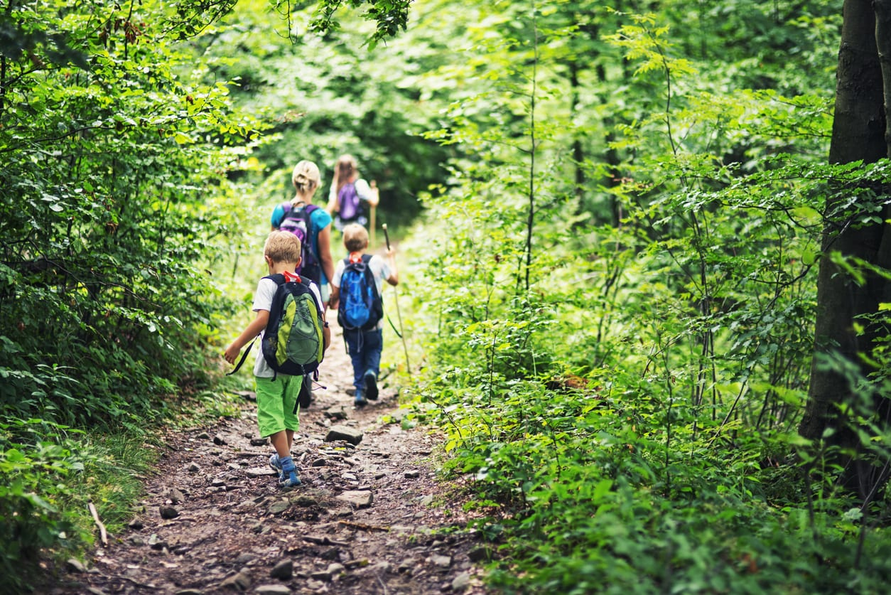 20 Best Nature Walks And Hikes For Kids In Atlanta