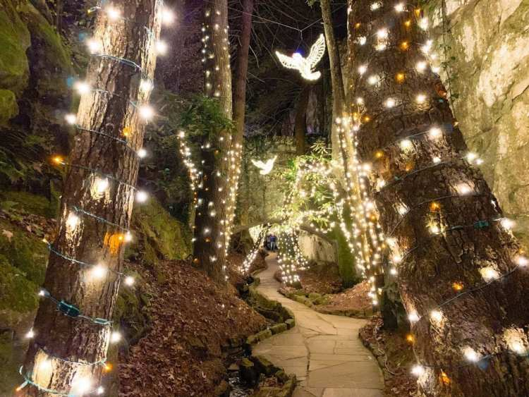 2019 Best Holiday Lights and Tree Displays Near Atlanta