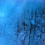vinyl window roswell