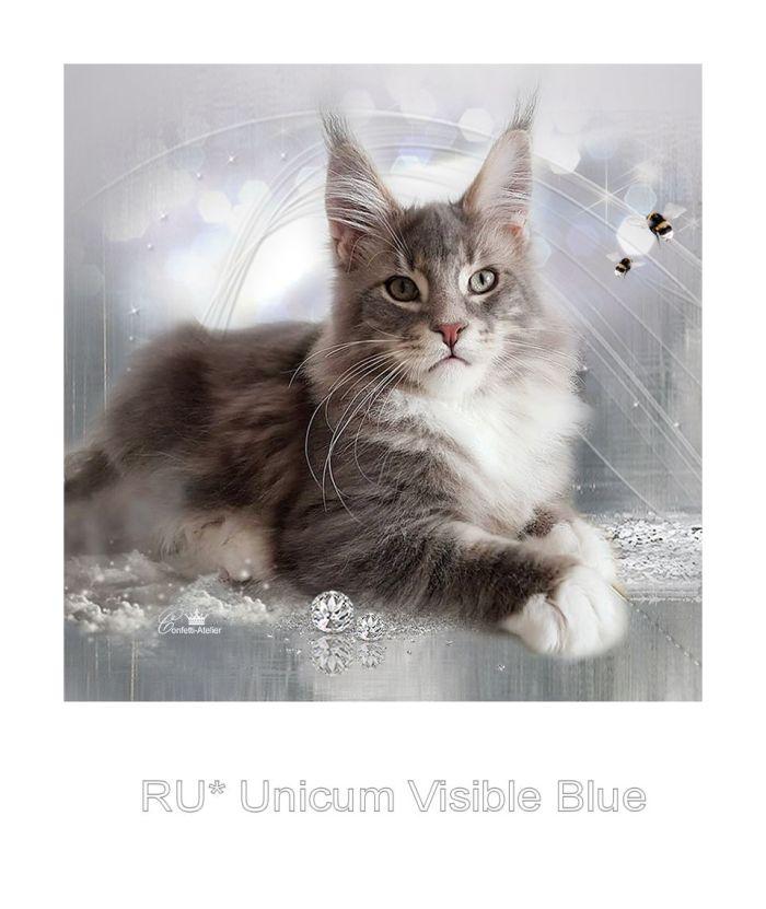 Visilble Blue_hp_start