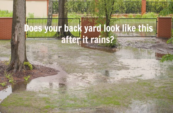 25+ Landscape Drainage Problems Pictures and Ideas on Pro