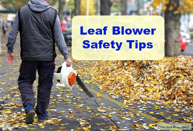 gasoline leaf blower safety