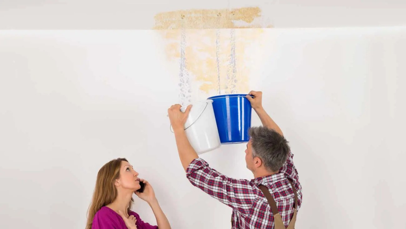 roof water damage repair Wake Forest NC ceiling leak cleanup ceiling leak repair ceiling leak restoration