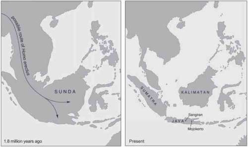 Sundaland sbelum banjir besar (kiri)