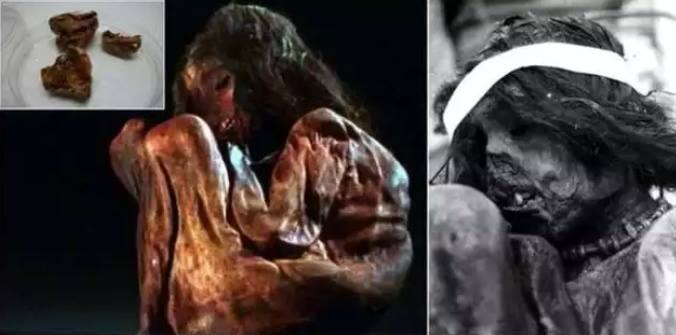 DNA Anak Lelaki Inca 500 Tahun Lalu, Menunjukkan …
