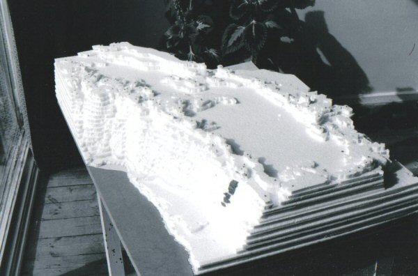 Altiplano model