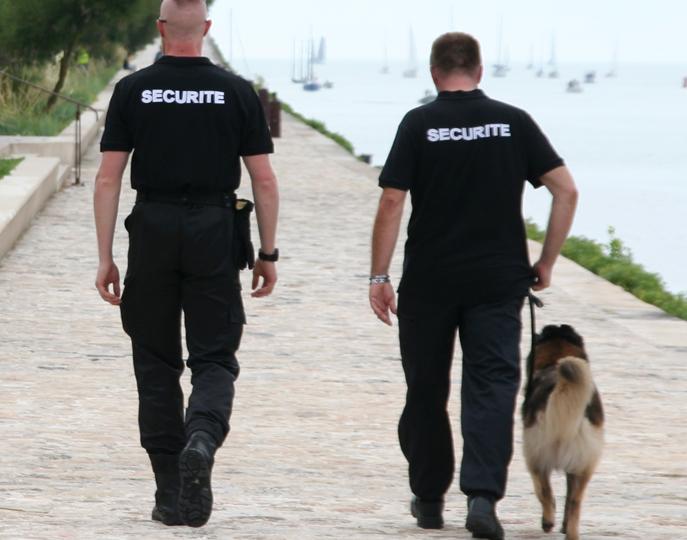 societe securite cynophile la rochelle