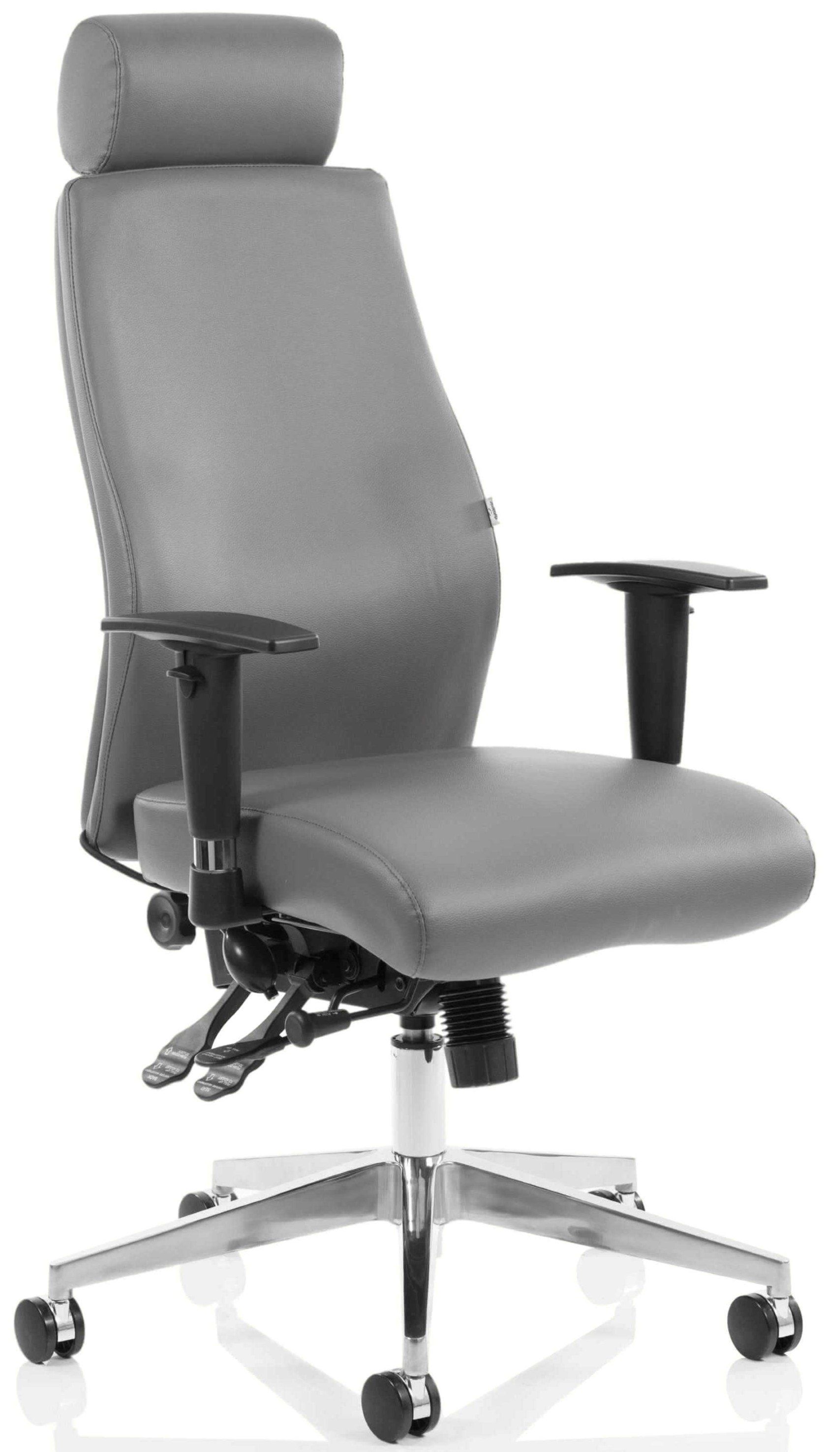 posture executive leather chair office chairs for women onyx chiropractor