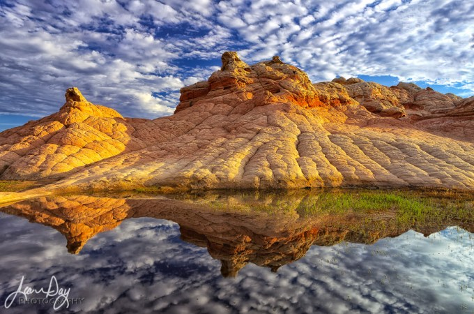 This might be my favorite shot from White Pocket. I was lucky to find three pools of water in the area, two of which made for some very nice reflection shots…and a nice way for my dogs to cool off in the desert heat! ;) I loved how on this morning the clouds did that pillowy thing almost mimicking the pillowed shape of the stone. It was a lovely morning wandering about this amazing place without another soul around.