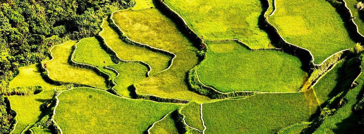 landscapes-affected-by-climate-change-featimg