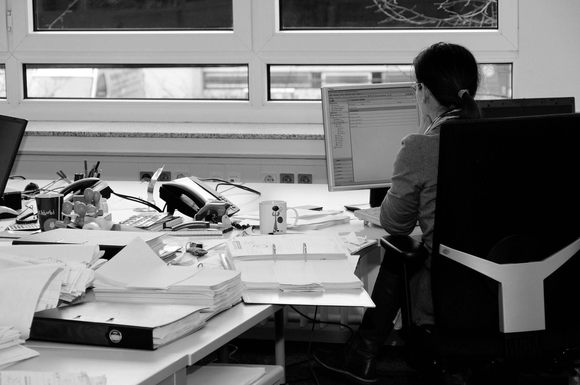 Company Secretarial Software
