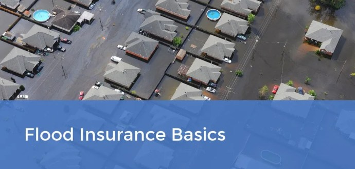 Flood Insurance Basics
