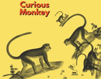 OPENING PARTY   Curious Monkey   Sé   FREE @ Curious Monkey   Lisboa   Lisboa   Portugal