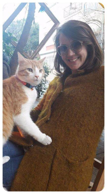 kedi ile yurtdışına nasıl gidilir