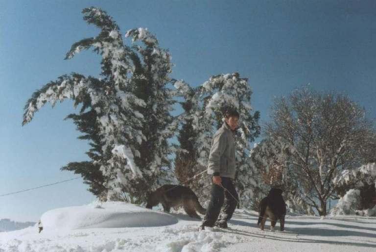 Neve al passo del Lupo 31/01/2004