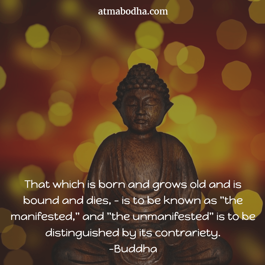 Best 10 Buddha Quotes For Change Your Life Into A Positive And Happy