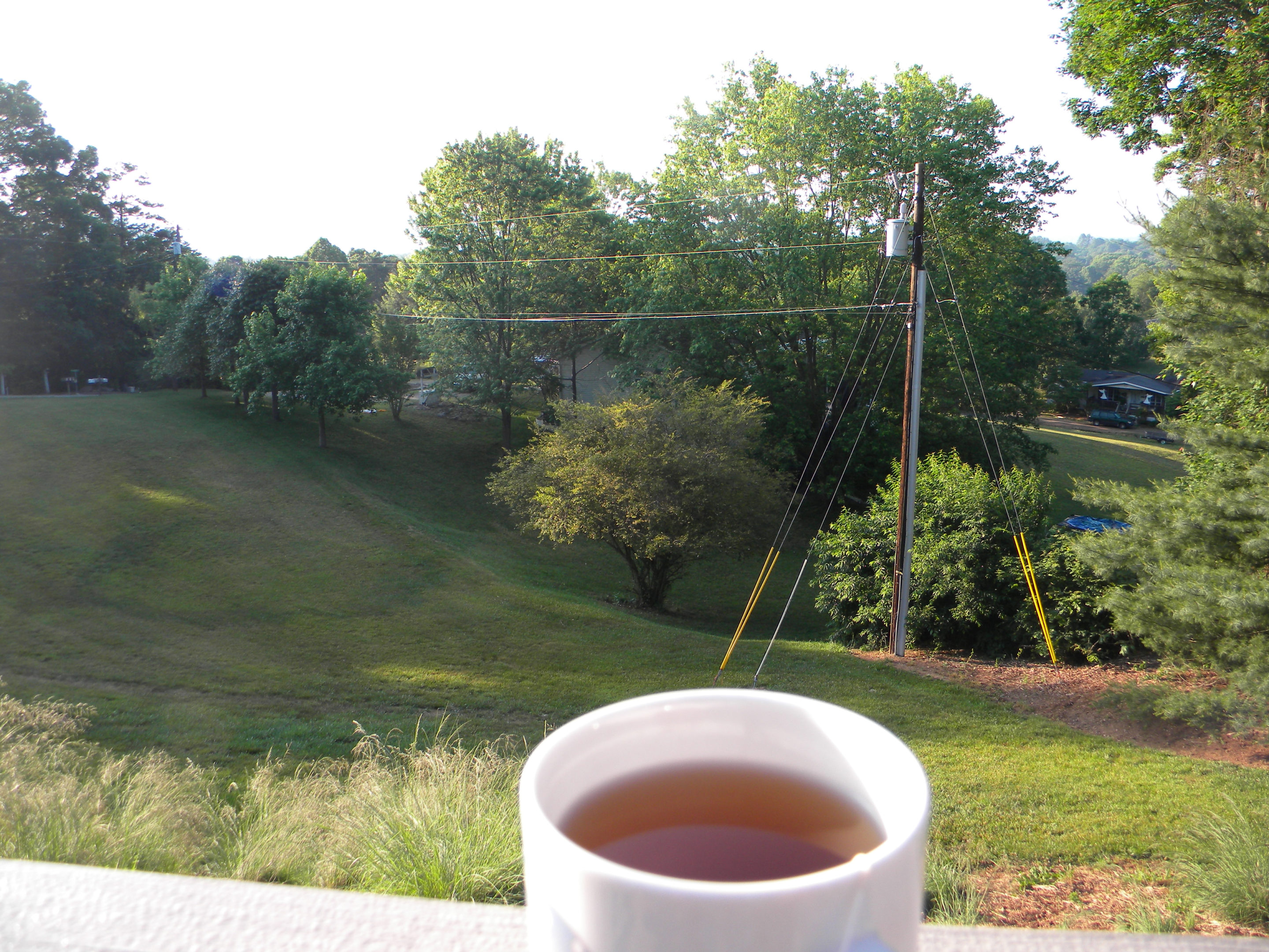 Tea on the deck