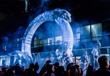 Cape Town Carnival Yields Riches