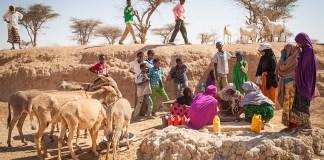 Cholera Crisis In Africa