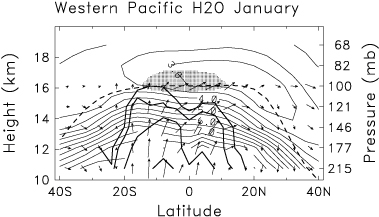 Convection in the Tropical Tropopause Region and