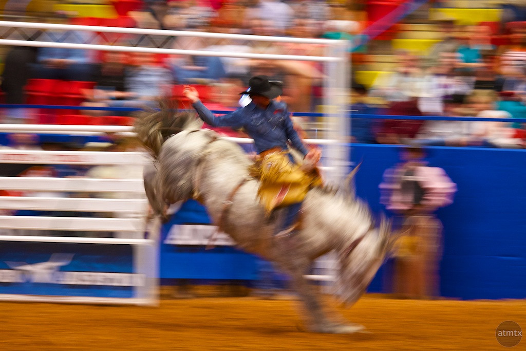Bucking and Blur #1, Rodeo Austin - Austin, Texas
