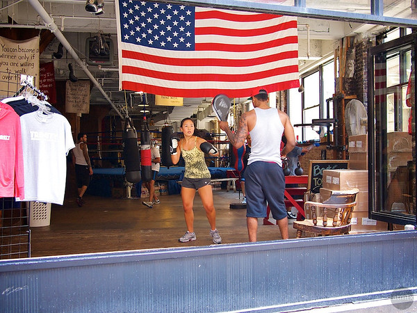 Patriotic Boxer, Lower Manhattan - New York, New York