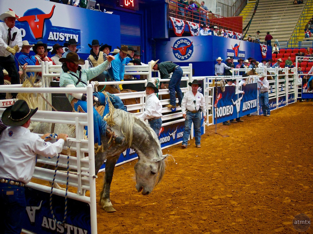 Bucking Bronco 3, Rodeo Austin - Austin, Texas