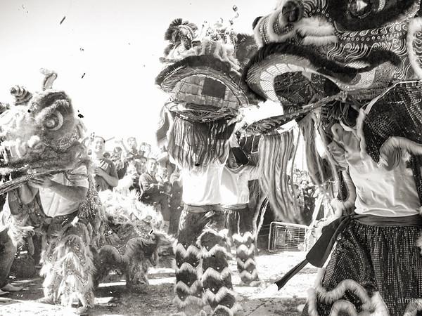 Vintage Lion Dance #3, 2012 Chinese New Year Celebration