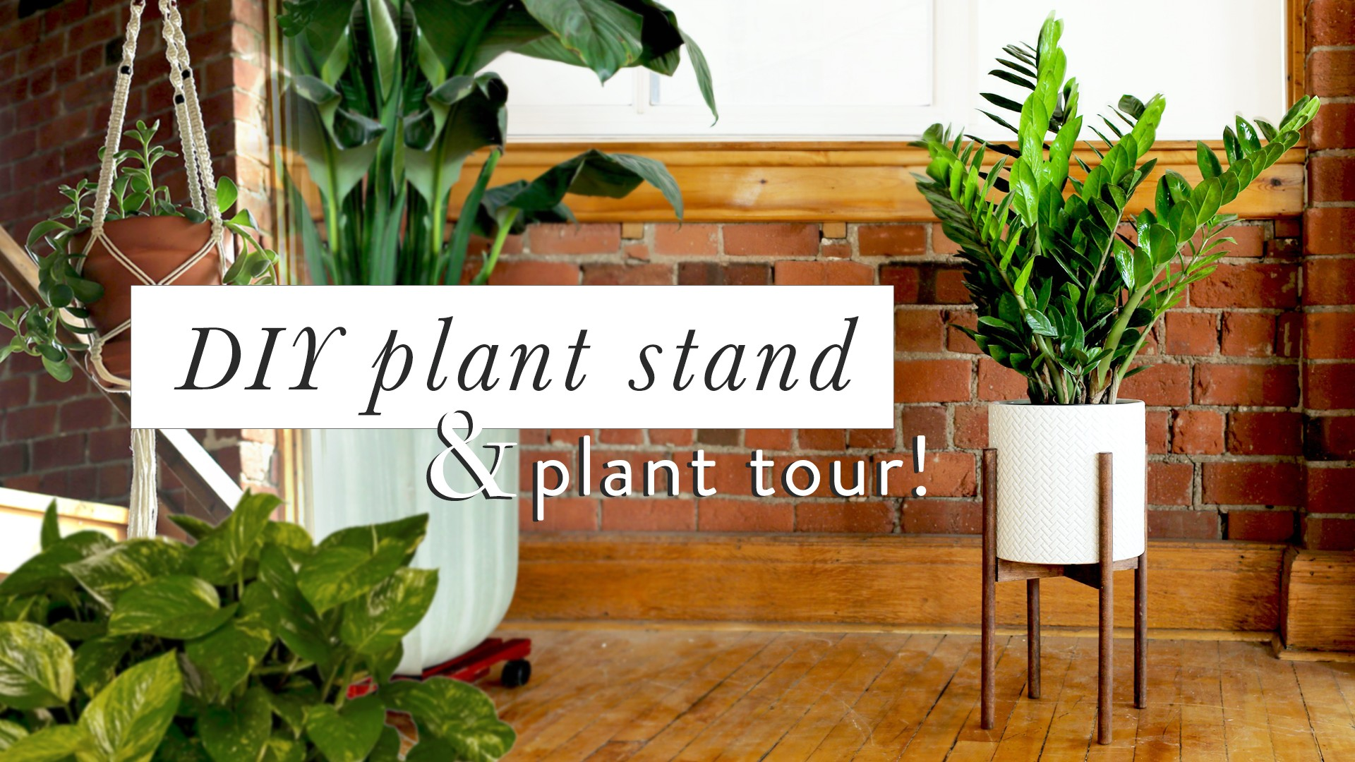 Weekend Diy Video How To Make Mid Century Planters Home