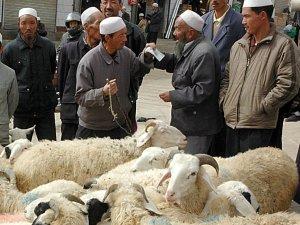 Sheep haggling